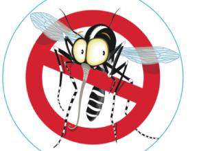 disinfestazione-zanzare-efficace